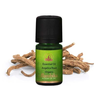 ANGELICA ROOT ESSENTIAL OIL, ORG