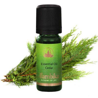 Cedar (Himalaya) Essential Oil, Org