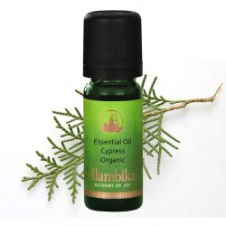 Cypress, Morocco Essential Oil, Org