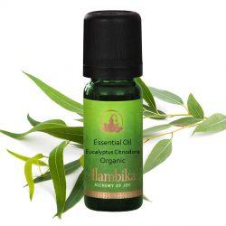 Eucalyptus Citriodora Essential Oil, Org
