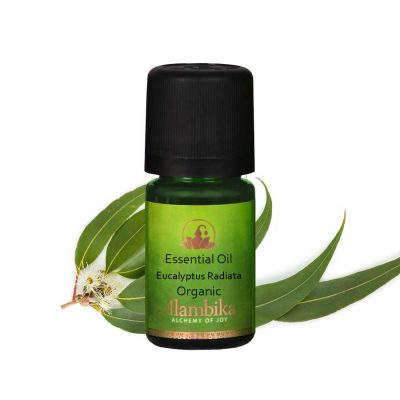 Eucalyptus Radiata Essential Oil, Org
