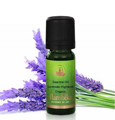 Lavender Highland, Wild Essential Oil, Org