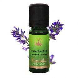 Lavender Kashmir Essential Oil, Org