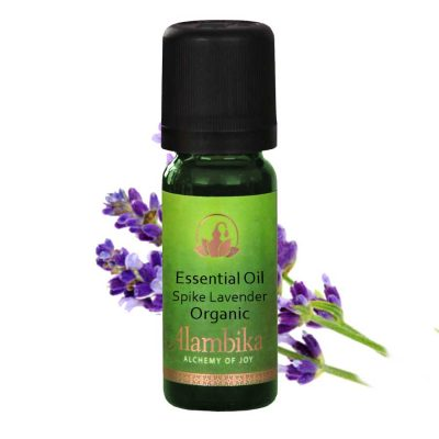 Lavender (Spike Lavender) Essential Oil, Org