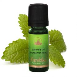 Mint (Bergamot Mint) Essential Oil, Org
