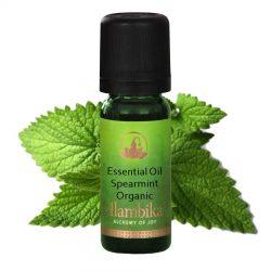 Mint (Spearmint) Organic Essential Oil 10ml, Org