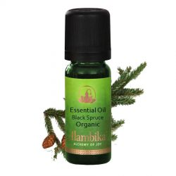Spruce (Black Spruce) Essential Oil, Org