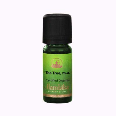 Tea-Tree-m.a-image